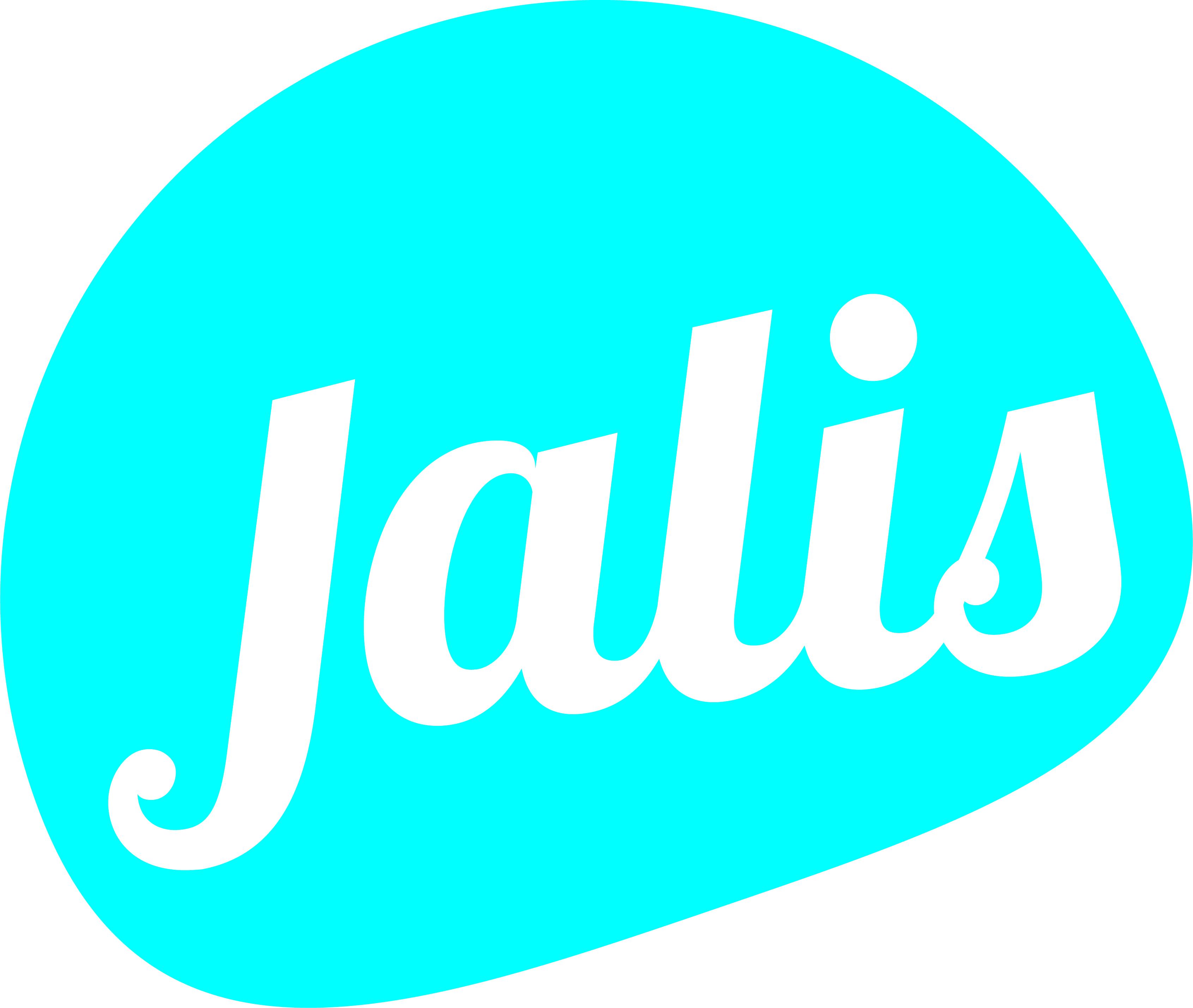 référencement web Jalis