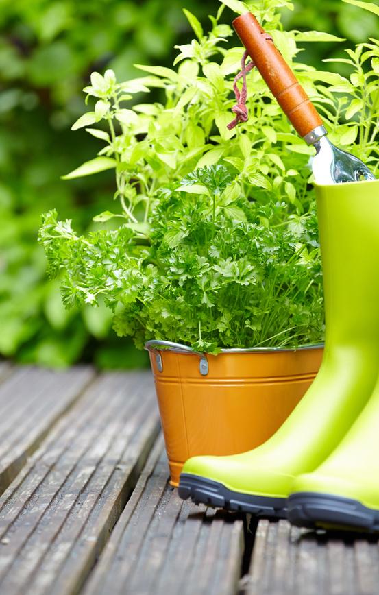 comment bien pr parer son jardin l arriv e de l hiver artisanat de france. Black Bedroom Furniture Sets. Home Design Ideas